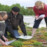 Going green: from ground to rooftops