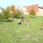 Sculpture on Campus 2012