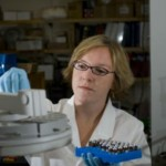 Environmental Sciences Program, grants give graduate students training in faculty research