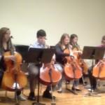Musicians designate day to celebrate the cello