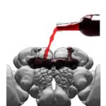 Groundbreaking Findings from Dr. Petruccelli's Study on Alcohol
